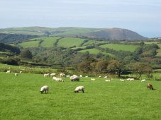 english_countryside_at_its_best_-_geograph-org_-uk_-_1394983
